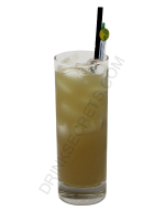 Amaretto Stone Sour cocktail image