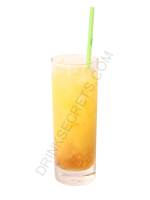 Bogarts Fruit Flash cocktail image