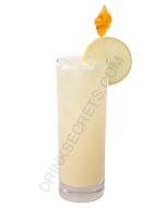 Coconut Delight cocktail image