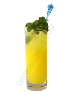 Dolomint cocktail image