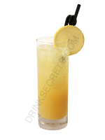 Ecuacooler cocktail image