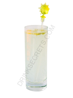 Gin Fizz cocktail image