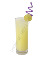 Gin Rickey cocktail image