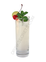Mint Collins cocktail image