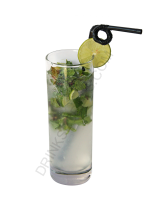 Mojito cocktail image