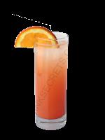 Orange Oasis cocktail image