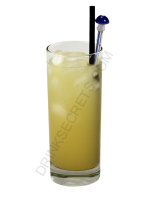 Salty Dog cocktail image
