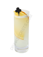 Tom Collins cocktail image