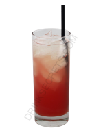 Watermelon cocktail image