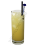 Salty Dog drink recipe