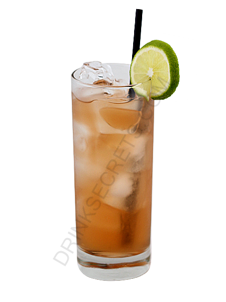 ... long island iced tea crafty little gnome long island iced tea 780