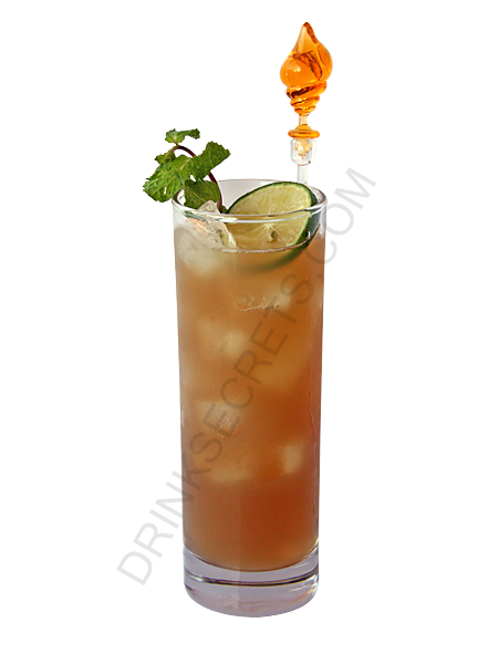 long island iced tea drink recipe all the drinks have pictures. Black Bedroom Furniture Sets. Home Design Ideas