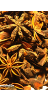 Anise Oil drink ingredient