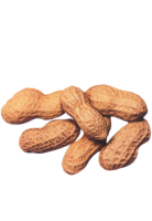 Peanut(s) drink ingredient
